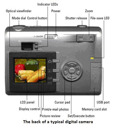 digital camera button